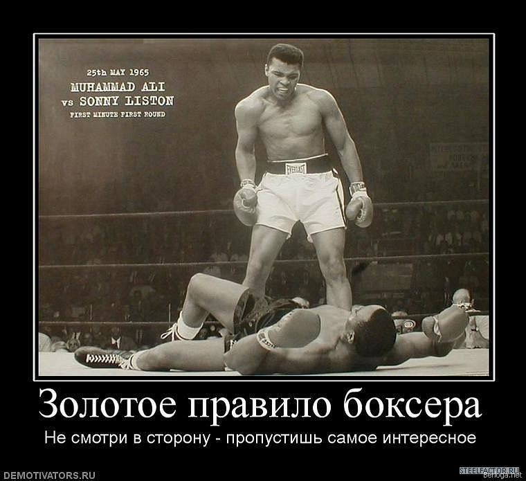 демотиваторы для боксеров несколько лет стали