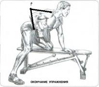 Это упражнение преимущественно нагружает широчайшие мышцы спины, большую круглую мышцу, заднюю часть дельтовидных...