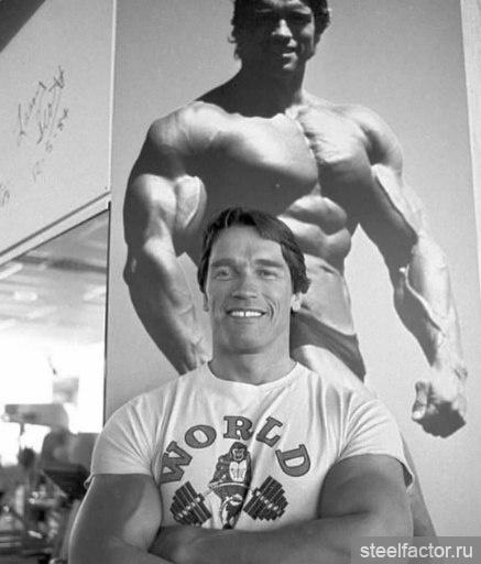 Simplyshredded Exclusive Profile Arnold Schwarzenegger
